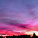 Sunset Over UTPB  by Sandra Moore