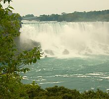 The American Falls by Diane  Kramer