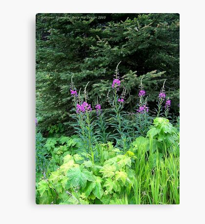 Fireweed Canvas Print