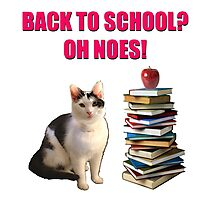Back to school cat Photographic Print