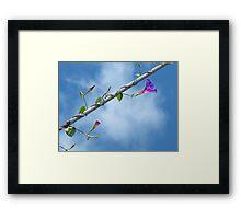 Tele-Flora Framed Print