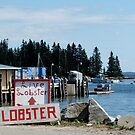 Fresh Lobster for Sale! by LifeInMaine