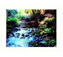 Serenity - Nature Reserve, Gatlinburg TN Art Print