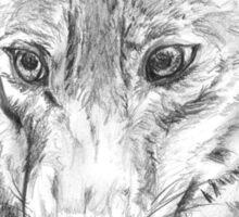 Proud silver wolf Sticker
