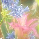 Dreamy Flowers by starbucksgirl26