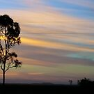 Sunset Bruce by Anthony Wratten