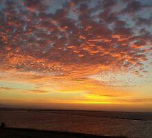 Bay Area Delta Sunset Landscape by 4ayesha