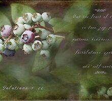 Blueberries by JulieLegg