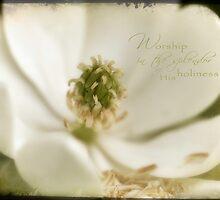 Magnolia White by JulieLegg