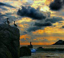 Evening Glory by Barbara  Brown