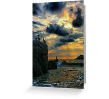 Evening Glory Greeting Card