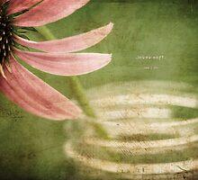 Coneflower Jar by JulieLegg