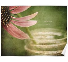 Coneflower Jar Poster