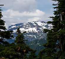 View from Mt. Washington, Vancouver Island, BC by Jeanne Frasse