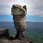 Flowerpot Island - Tobermory, Ontario, Canada by jules572