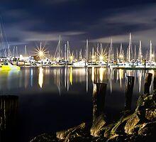Midnight Marina by Shannon Rogers