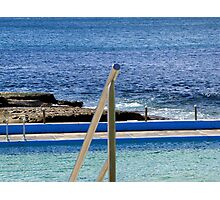Dee Why Saltwater Pool Photographic Print