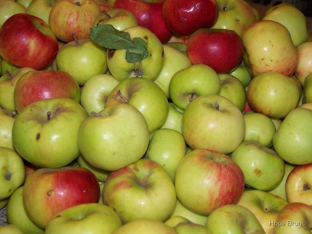 Apple Pile by Hope Bruns