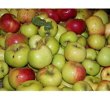 Apple Pile Photographic Print