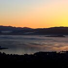 Daybreak over Wellington Harbour by Duncan Cunningham