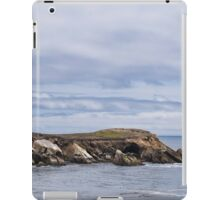 Pelican Race iPad Case/Skin