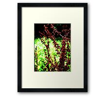 I am growing, I am dying, I am somewhere in-between Framed Print
