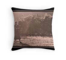 Summer solstice at Keswick Throw Pillow