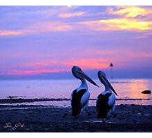 Morning Stroll , Manly Bay, Brisbane Photographic Print
