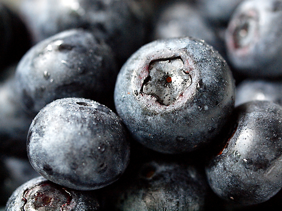 Blueberries by Aileen David