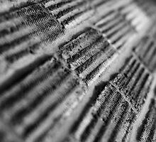 {texture | brickwork} by Paul Smith