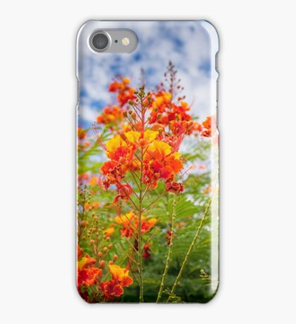 See the Sky iPhone Case/Skin