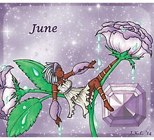 June Zodiac Photographic Print