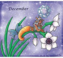 December Zodiac Photographic Print