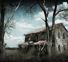 Reclamation - Discarded Farm House in Rural Missouri by Corey Warner