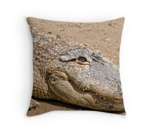 Smile...You're On Candid Camera Throw Pillow