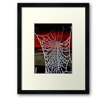 Icicles Spiderweb Framed Print