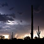 Desert Monsoon by pandapix
