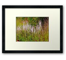Stalk Talk Framed Print