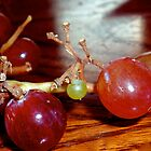 The Vine that Bears the Fruit by Photokid07