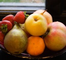 The Healthy Option by Lynne Morris
