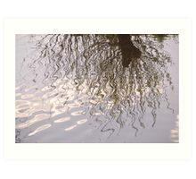 Willow Reflection Art Print