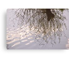 Willow Reflection Canvas Print