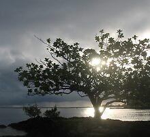 Good Morning, Sunshine by ronholiday