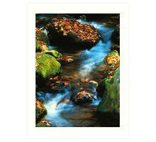 Mountain stream,Roaring Fork Art Print