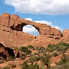 See Through Rock by saxonfenken