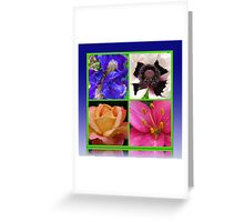 Peace Rose, Ruffled Poppy, Iris and Lily Collage Greeting Card