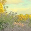 Impression of Autumn  by Brian Bo Mei