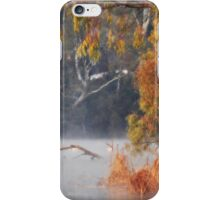 A little Chilly this Morning iPhone Case/Skin