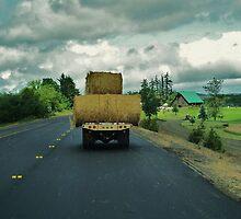 Country Traffic Jam by trueblvr