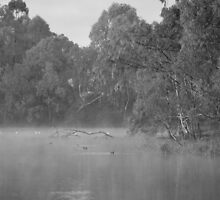 Chilly Morning in Black and White by Lozzar Landscape